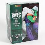 FIG118 – Piccolo – BWFC – 6