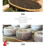 TRA08 – Phuc Hai Huong 2014 (2)